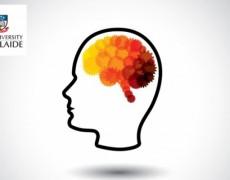 Μόλις 30 λεπτά άσκησης την ημέρα βελτιώνουν την εγκεφαλική λειτουργία
